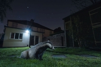Nocne safari z aparatem w ogrodzie