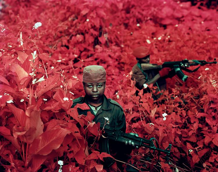 Richard Mosse, wojna w Kongo, zdjęcia Kodak Aerochrome