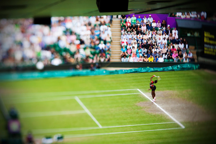 Londyn 2012 - złoty medal dla Sereny Williams, fot David Burnett