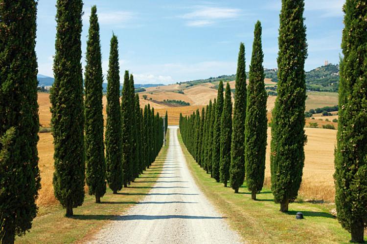 fotografia krajobrazu ujęcie symetryczne