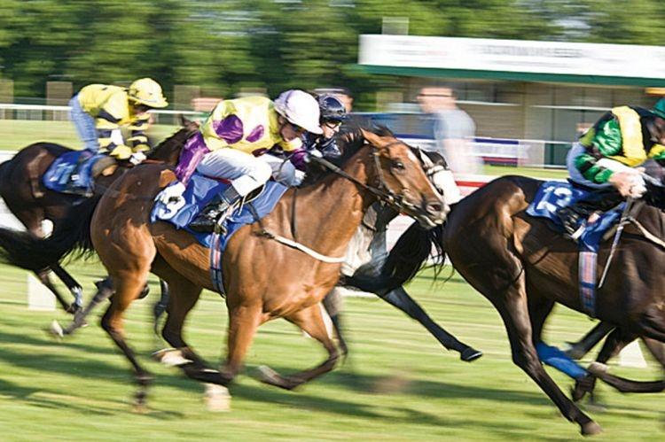(1/80 s) To klasyczne, panoramowane zdjęcie galopujących koni. Obiekt jest ostry, a tło rozmazane. W tym wypadku panoramowanie zostało wykonane w poziomie, obiektyw prowadził za końmi, ostrość była zablokowana na koniu i dżokeju wśrodku kadru (fot. Helen Armstrong).
