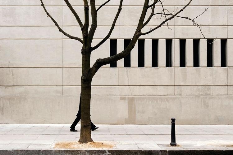 """Drzewo, Londyn, 2006, fot. Nils Jorgensen """"Moją uwagę przyciągnął piękny kształt drzewa, kontrastujący z geometrycznym wzorem w tle. Miałem szczęście, trafiając na mężczyznę częściowo ukrytego za drzewem""""."""