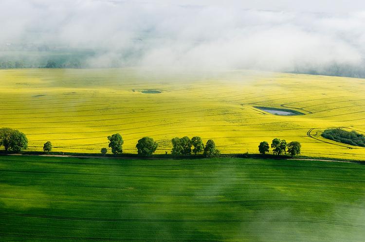 fot. Dariusz Paciorek
