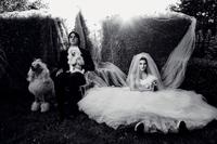 Jak zostać fotografem ślubnym - porady White Smoke Studio