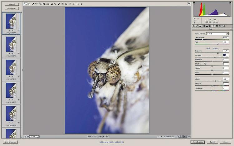 Przetwórz wsadowo pliki RAW Najlepiej jest zapisywać zdjęcia w formacie RA W, a następnie przetworzyć zdjęcia wsadowo w module Camera Raw i skonwertować je do postaci plików JPEG.