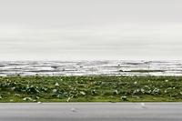 Andreas Gursky - cichy rekordzista