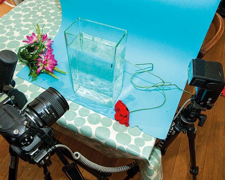 Przygotuj studio Weźcie szklaną wazę lub małe akwarium i postawcie na tle jednolitego kolorowego kartonu. Zboku ustawcie lampę błyskową. Korzystajcie z trybu manualnego zarówno w aparacie, jak i w lampie. Sprawdzajcie histogram, by ocenić poprawność ekspozycji.