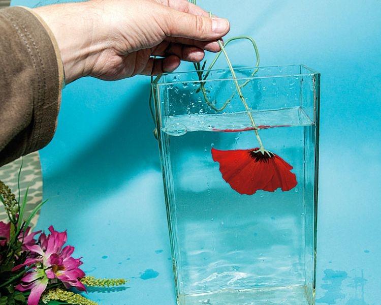 Odpalamy! Przestawcie lustrzankę na tryb ciągły i róbcie zdjęcia seriami. Włóżcie kwiat do wody i w tym samym czasie odpalcie serię zdjęć. Upewnijcie się, że na karcie macie wystarczająco dużo miejsca, by zapisać sporo zdjęć podczas sesji.