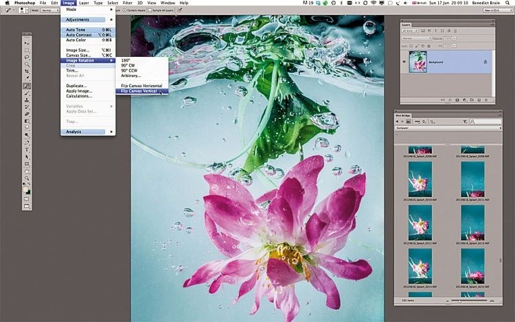 Obrót zdjęcia Wyedytujcie zdjęcie w Adobe Camera Raw, otwórzcie w Photoshopie i przekręćcie do góry nogami: Obraz>Rotacja>Obróć obraz w poziomie. Sprawi to wrażenie, że kwiatek wynurza się z wody.