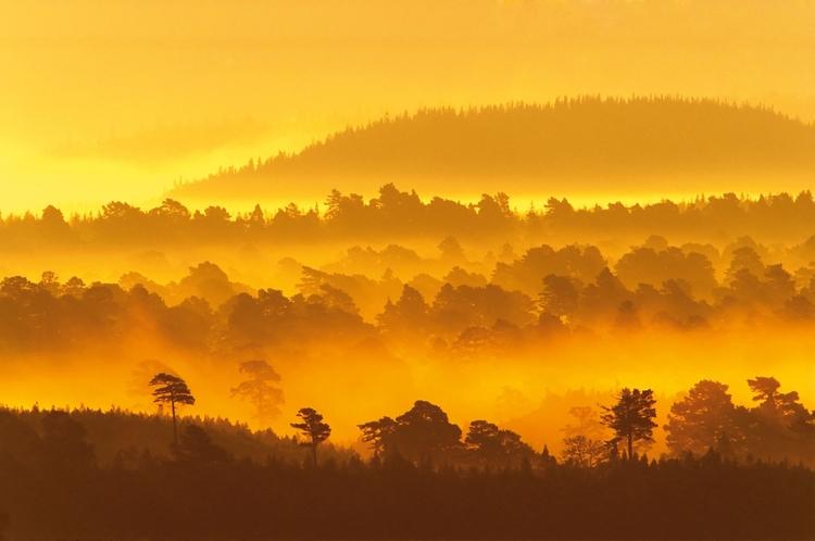 Wykorzystaj teleobiektyw do fotografii krajobrazu