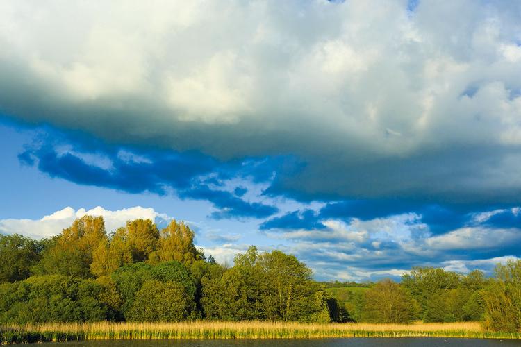 Krajobraz Ten styl daje ogólnie dobrze nasycone kolory ze stosunkowo mocno podkreślonymi błękitami i zieleniami. Stopień wyostrzania obrazu jest także dość wysoki.