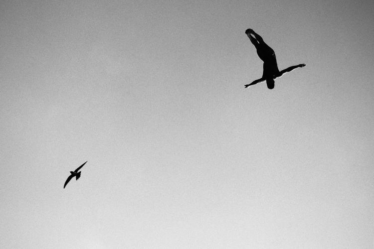 Zwycięzca kategorii: Wings fotograf: Samo Vidic,  sportowiec: Jorge Ferzuli,  miejsce: Ateny, Grecja