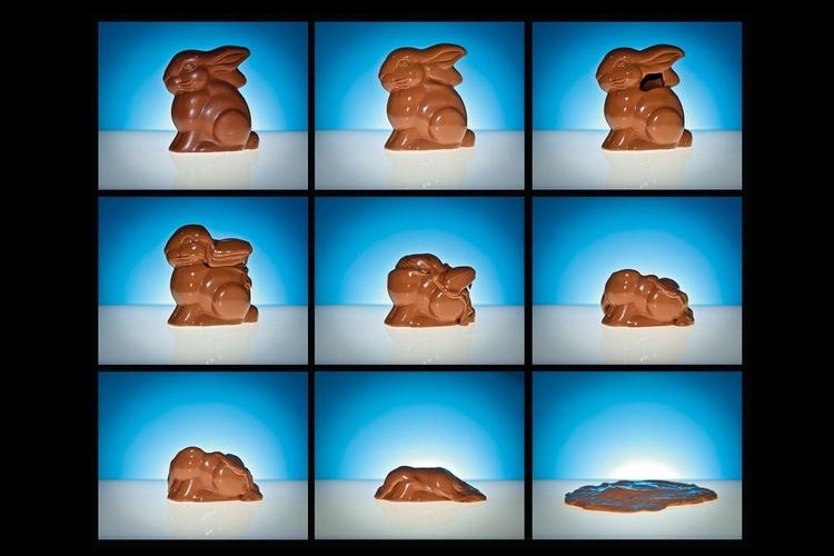 Roztapiamy króliczka, czyli jak zrobić film poklatkowy
