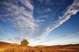 Jak uczynić niebo głównym tematem zdjęcia krajobrazowego