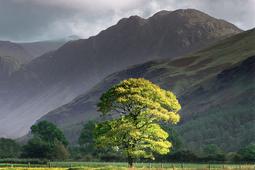 Jak komponować zdjęcia krajobrazowe
