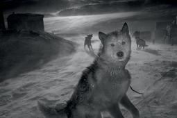 Ragnar Axelsson - fotograf Północy