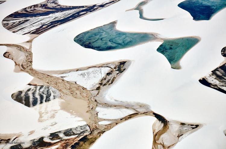 """Zwycięskie zdjęcie z kategorii """"Detal"""" - """"The sand canvas"""". Fot. Rudi Sebastian / Wildlife Photographer of the Year"""