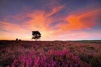 Zachód słońca i filtr gradacyjny