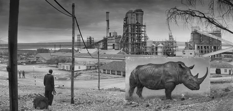 Fabryka z nosorożcem, 2014, fot. Nick Brandt