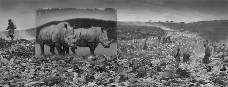 Wysypisko śmieci i nosorożce, 2015, fot. Nick Brandt