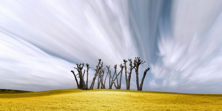 zdjęcia krajobrazowe fotograf Lisa Wood