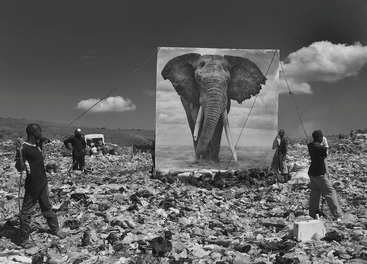 Wysypisko śmieci i słoń, 2015, fot. Nick Brandt
