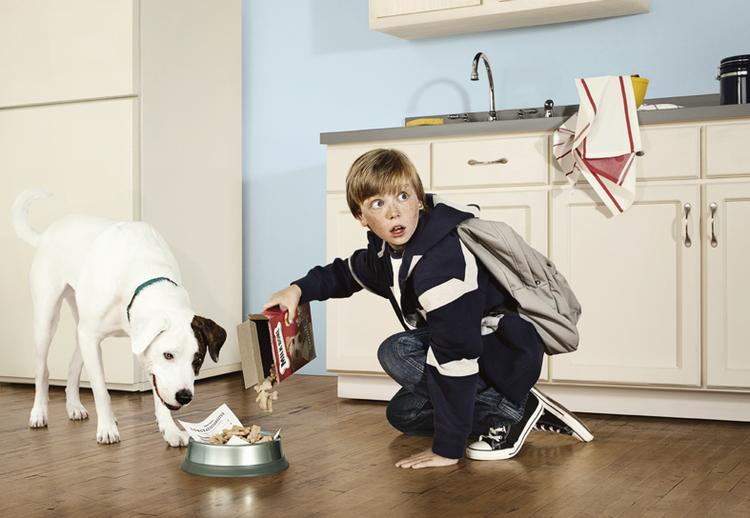 """""""Część sesji z Nowego Jorku dla fińskiej marki okularów Instrumentarium. Najtrudniejszą rzeczą na planie było powstrzymanie psa przed spałaszo-waniem całego jedzenia. Na szczęscie pod ręką był jego opiekun""""; fot. Alexandra Klever"""