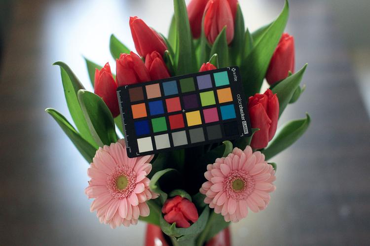 Kiedy już ustawisz światła w studio lub podejmiesz decyzję o rozpoczęciu zdjęć w plenerze, zrób pierwsze zdjęcie sceny razem z ColorCheckerem.