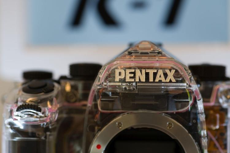 Wyświetl zdjęcia w pełnej rozdzielczości:     ISO 800 |  ISO 1600 |  ISO 3200 |  ISO 6400 |   ISO 12800 |  ISO 25600       Aparat fotograficzny: Pentax K-1 + Pentax smc D FA 100 mm f/2.8 Macro WR