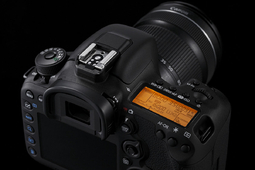 Canon EOS 7D Mark II [test w DCP]