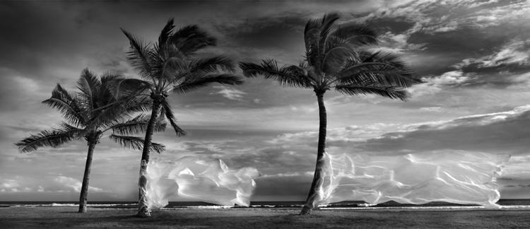 fot. Rafal Maleszyk, Stany Zjednoczone / Fine Art