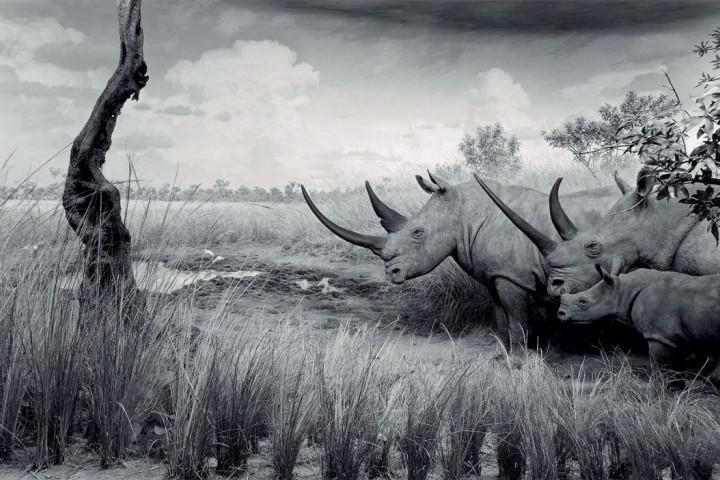 Hiroshi Sugimoto - naturalna iluzja